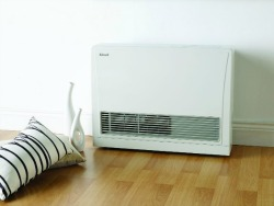 Rinnai convection flued gas heater